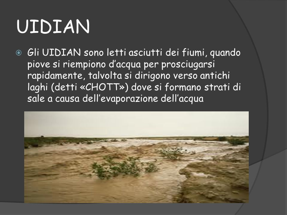 UIDIAN