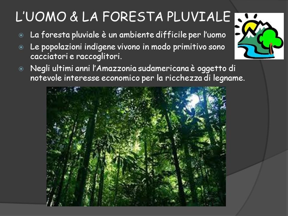 L'UOMO & LA FORESTA PLUVIALE