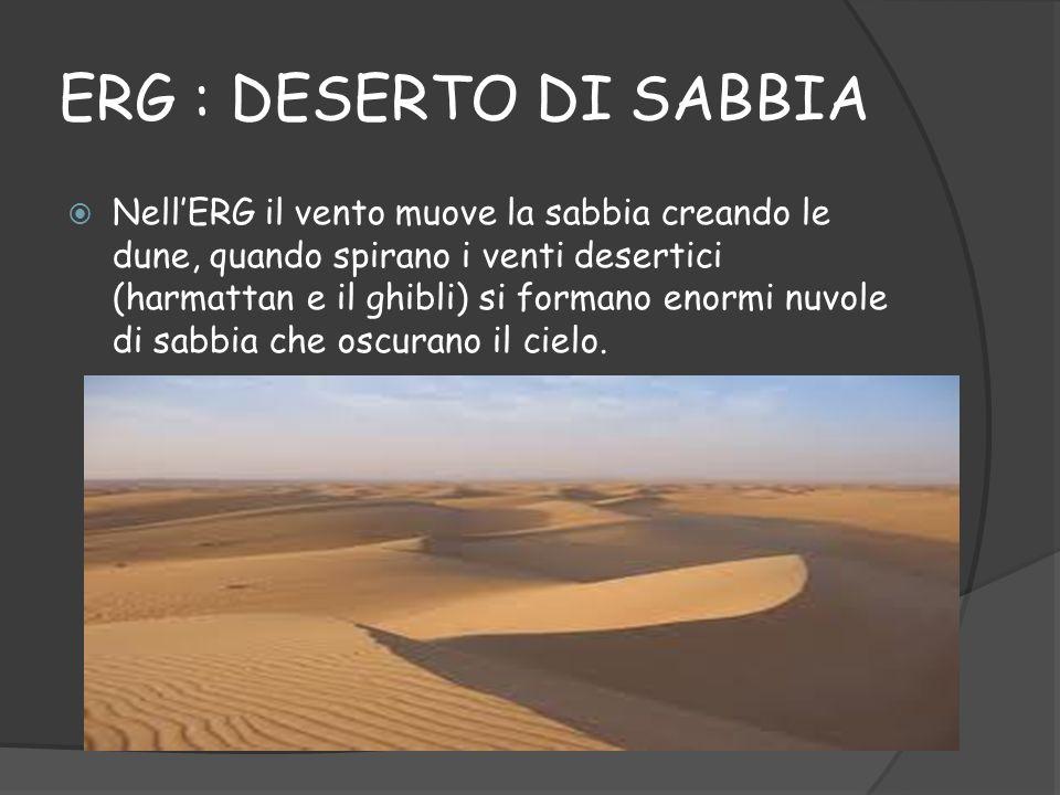 ERG : DESERTO DI SABBIA