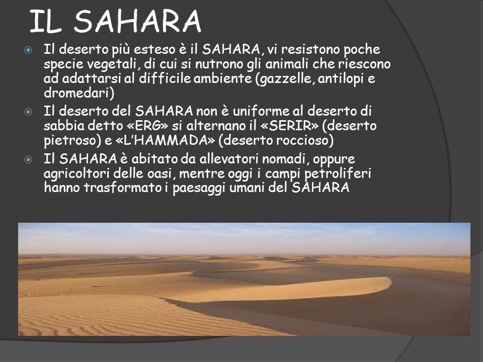 IL SAHARA