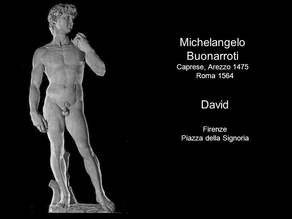 Michelangelo Buonarroti David Caprese, Arezzo 1475 Roma 1564 Firenze