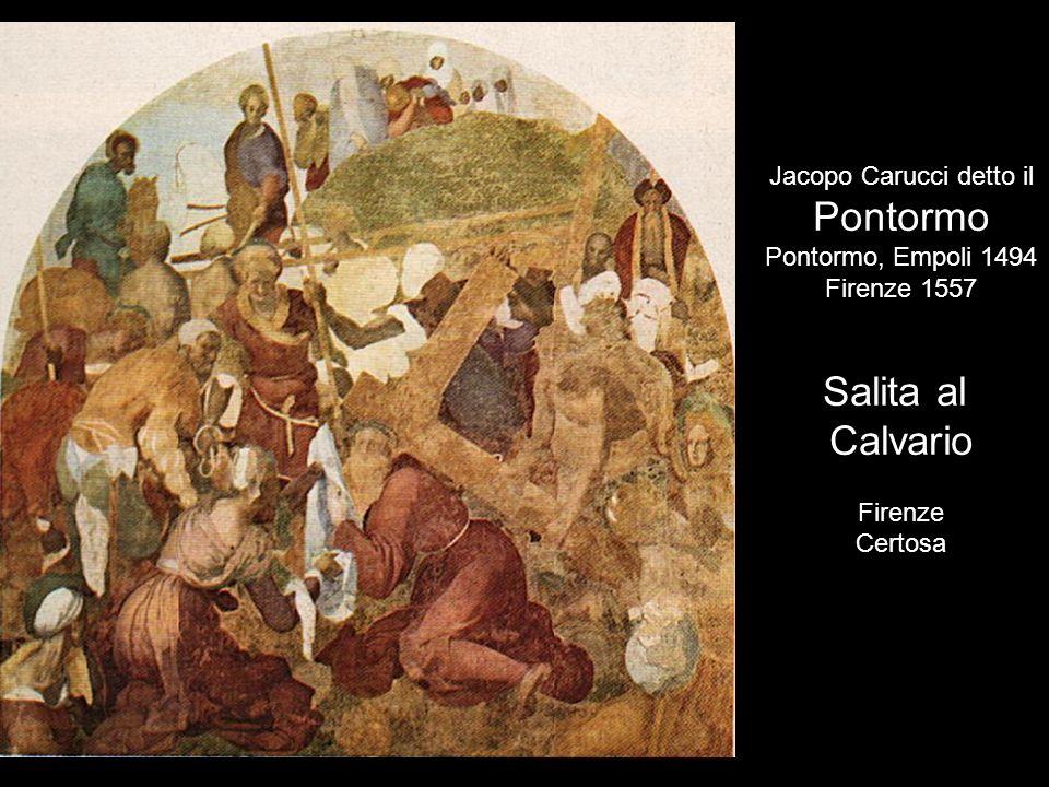 Jacopo Carucci detto il