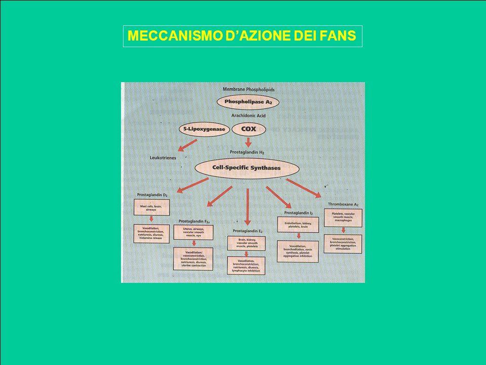 MECCANISMO D'AZIONE DEI FANS