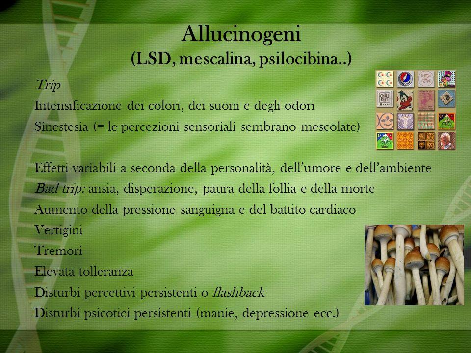 Allucinogeni (LSD, mescalina, psilocibina..)