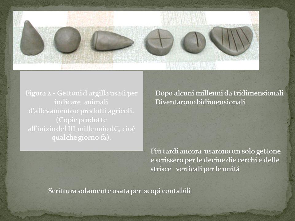 Figura 2 - Gettoni d argilla usati per indicare animali d allevamento o prodotti agricoli. (Copie prodotte all inizio del III millennio dC, cioè qualche giorno fa).