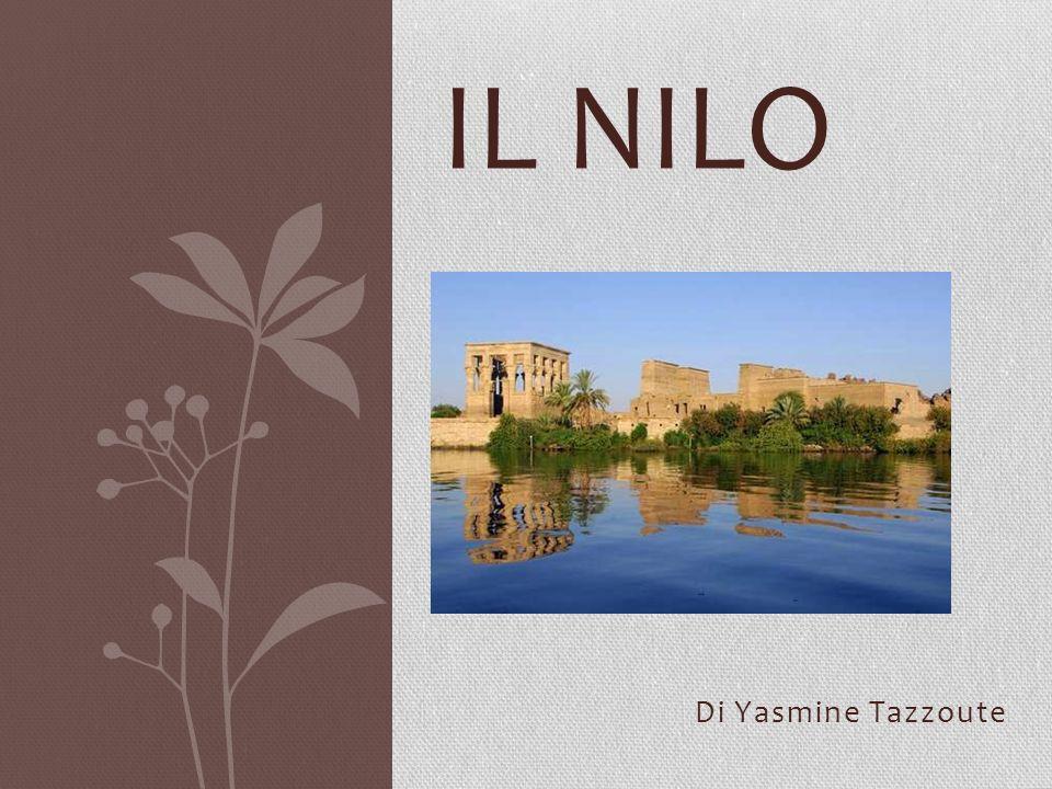 IL Nilo Di Yasmine Tazzoute