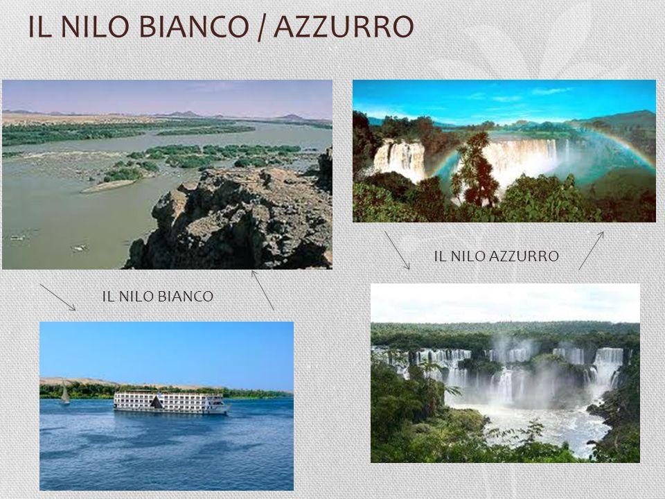 IL NILO BIANCO / AZZURRO