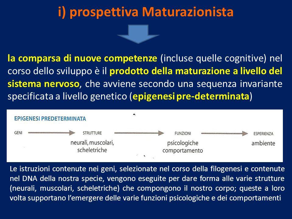 i) prospettiva Maturazionista