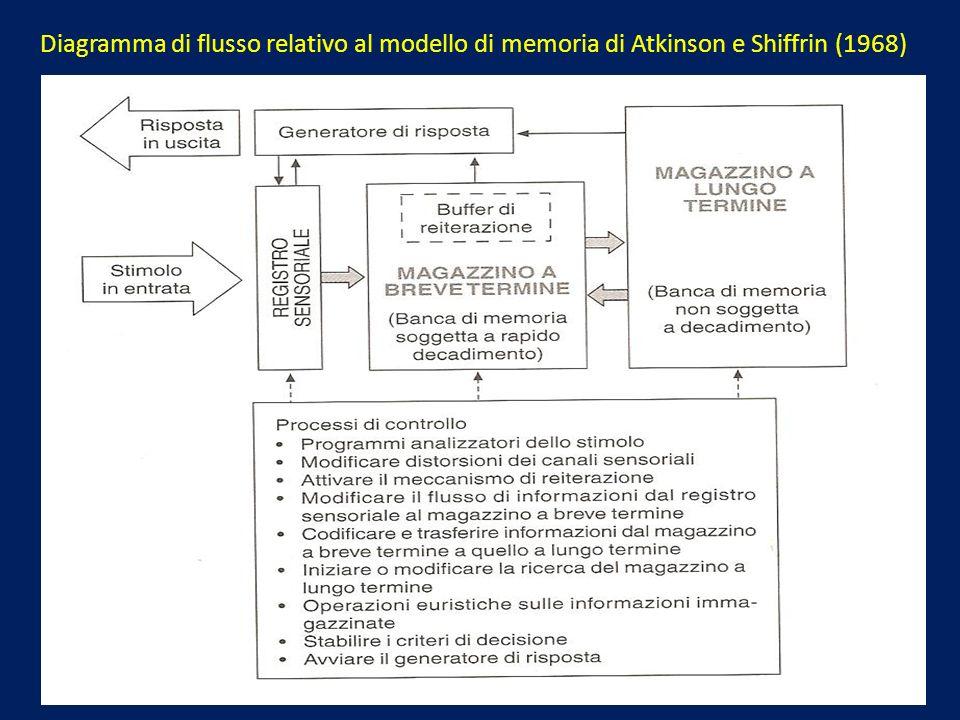 Diagramma di flusso relativo al modello di memoria di Atkinson e Shiffrin (1968)