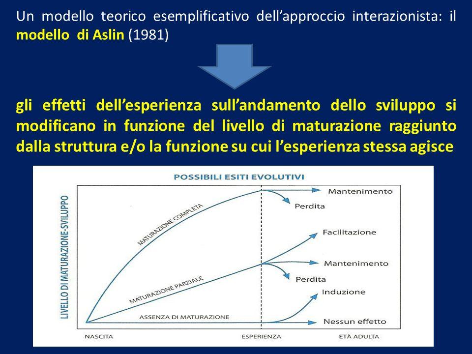Un modello teorico esemplificativo dell'approccio interazionista: il modello di Aslin (1981)