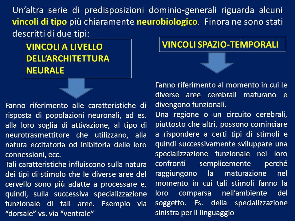 VINCOLI SPAZIO-TEMPORALI VINCOLI A LIVELLO DELL'ARCHITETTURA NEURALE