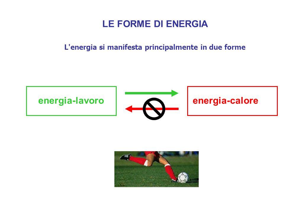 L energia si manifesta principalmente in due forme