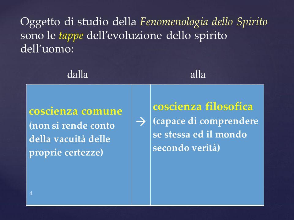 Oggetto di studio della Fenomenologia dello Spirito sono le tappe dell'evoluzione dello spirito dell'uomo: