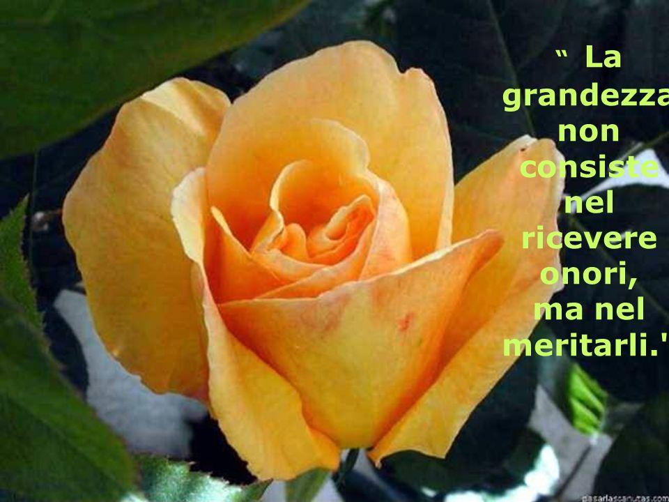 La grandezza non consiste nel ricevere onori,