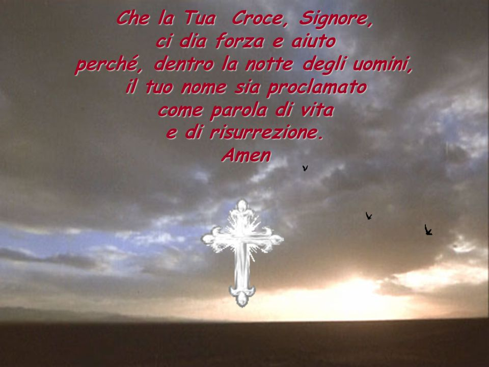 Che la Tua Croce, Signore, ci dia forza e aiuto