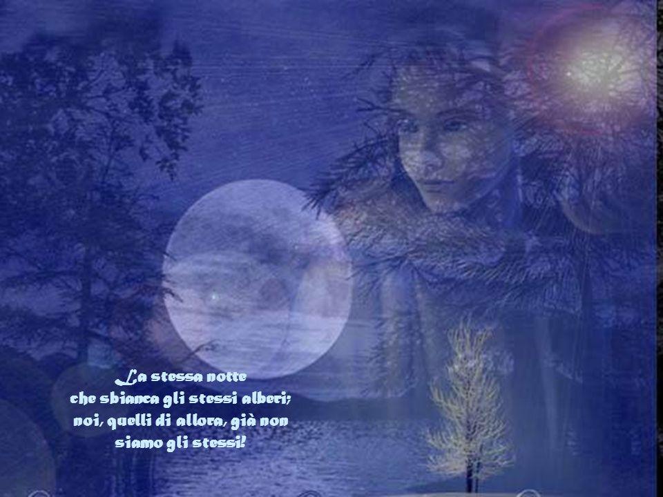 La stessa notte che sbianca gli stessi alberi; noi, quelli di allora, già non siamo gli stessi!