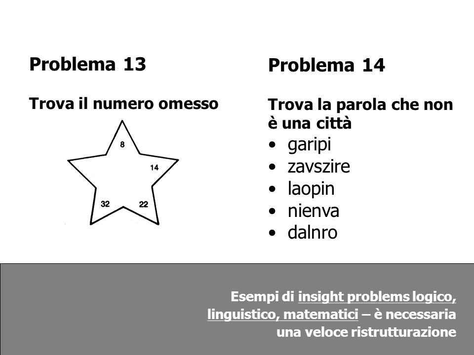 Problema 13 Problema 14 garipi zavszire laopin nienva dalnro