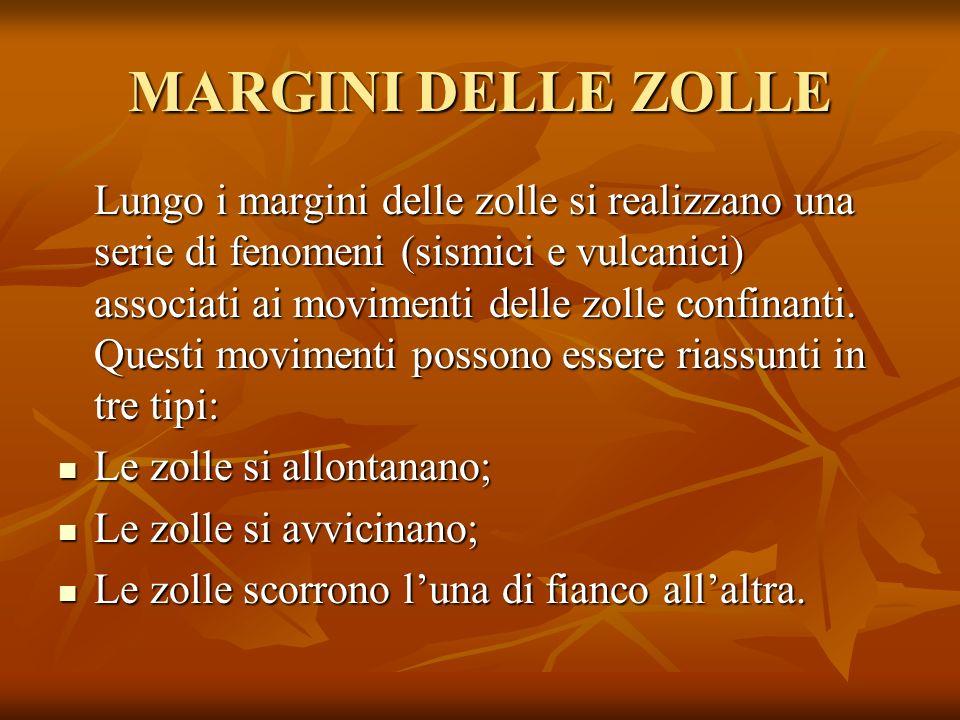 MARGINI DELLE ZOLLE
