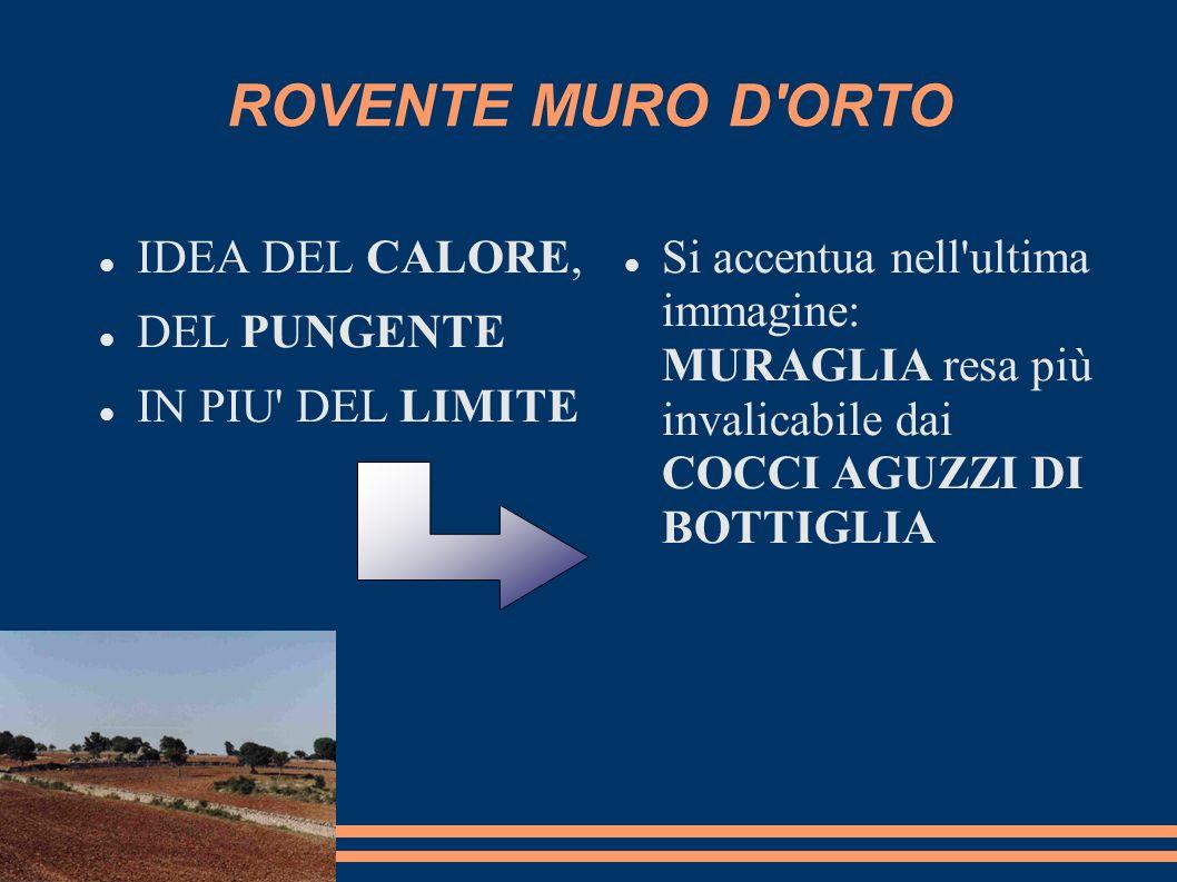 ROVENTE MURO D ORTO IDEA DEL CALORE, DEL PUNGENTE IN PIU DEL LIMITE