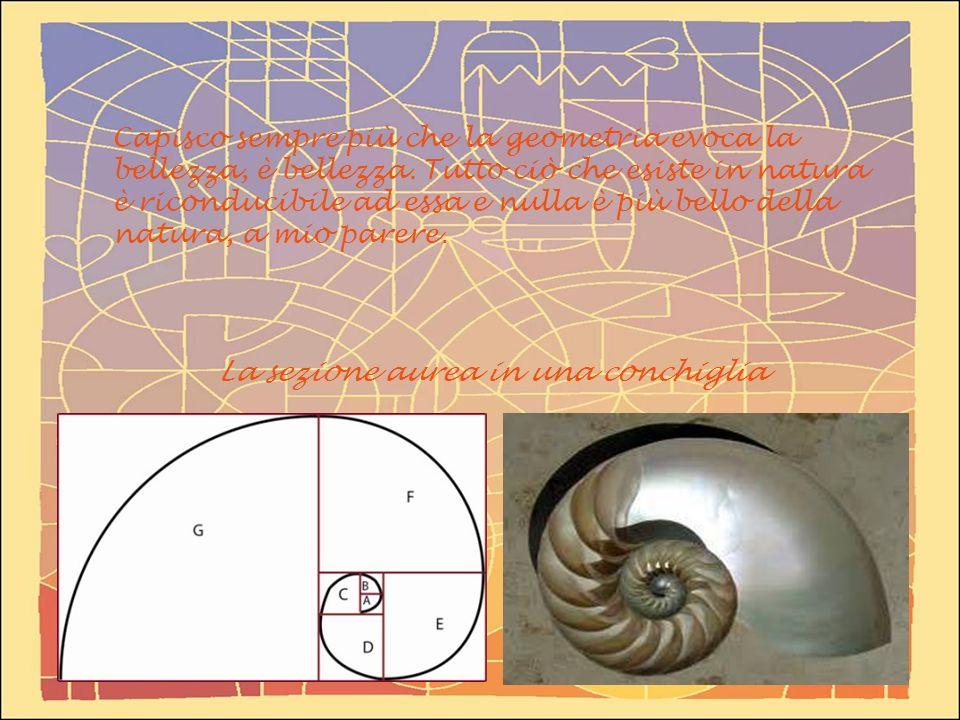 Capisco sempre più che la geometria evoca la bellezza, è bellezza