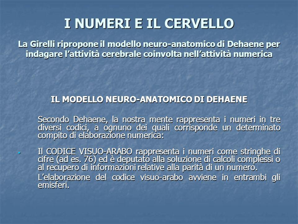 IL MODELLO NEURO-ANATOMICO DI DEHAENE