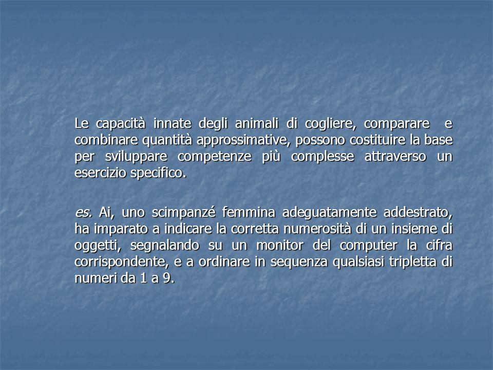 Le capacità innate degli animali di cogliere, comparare e combinare quantità approssimative, possono costituire la base per sviluppare competenze più complesse attraverso un esercizio specifico.