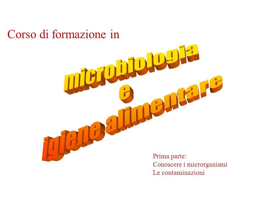 microbiologia e igiene alimentare Corso di formazione in Prima parte: