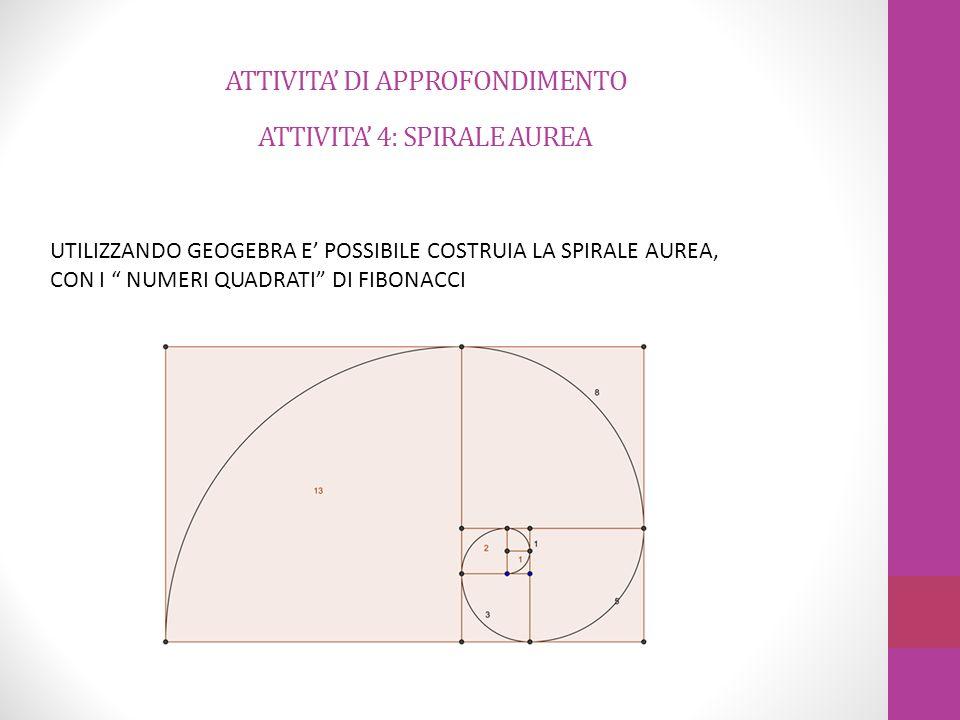 ATTIVITA' DI APPROFONDIMENTO ATTIVITA' 4: SPIRALE AUREA