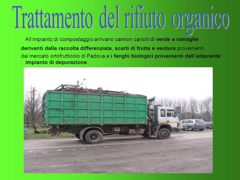 Trattamento del rifiuto organico