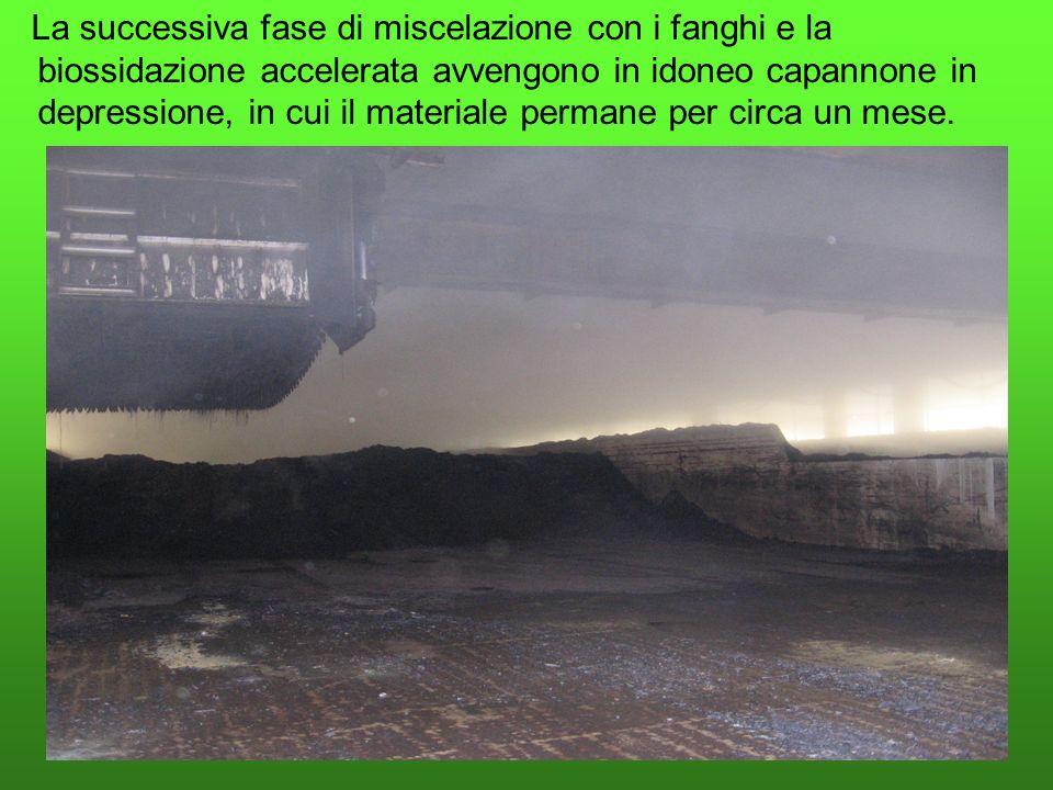 La successiva fase di miscelazione con i fanghi e la biossidazione accelerata avvengono in idoneo capannone in depressione, in cui il materiale permane per circa un mese.