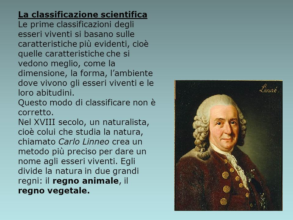 La classificazione scientifica