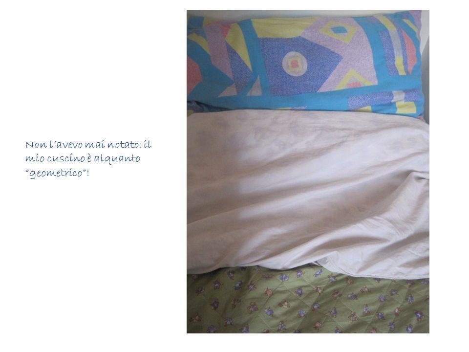 Non l'avevo mai notato: il mio cuscino è alquanto geometrico !