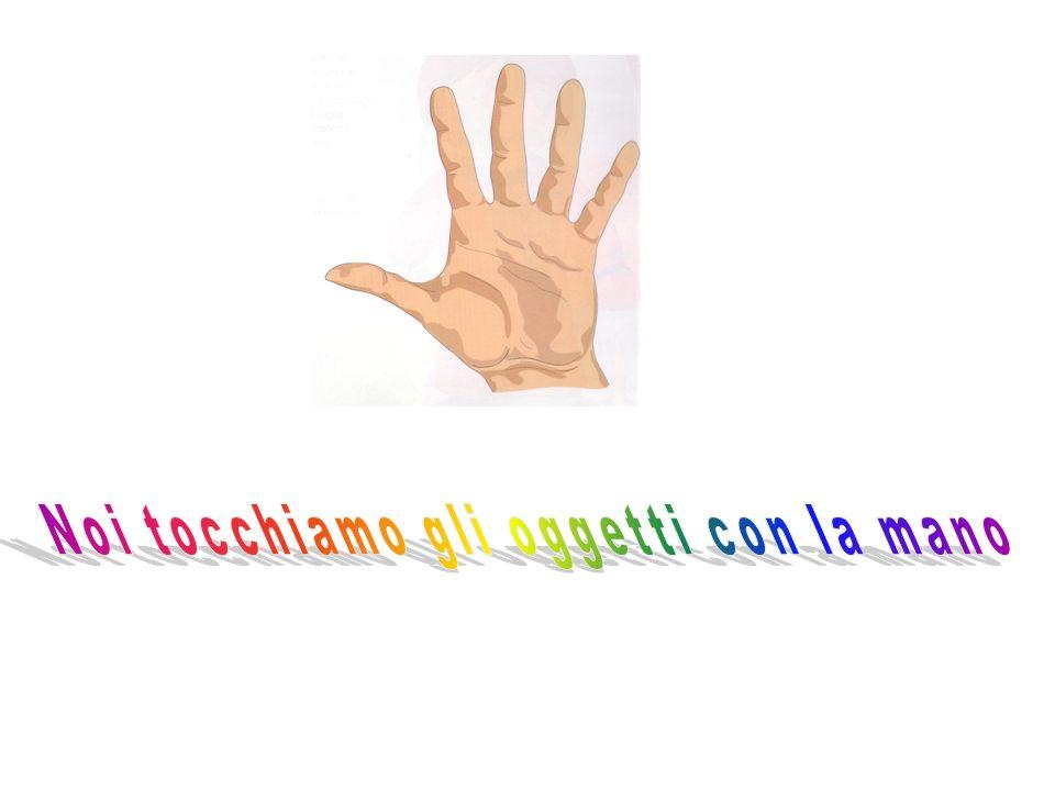 Noi tocchiamo gli oggetti con la mano