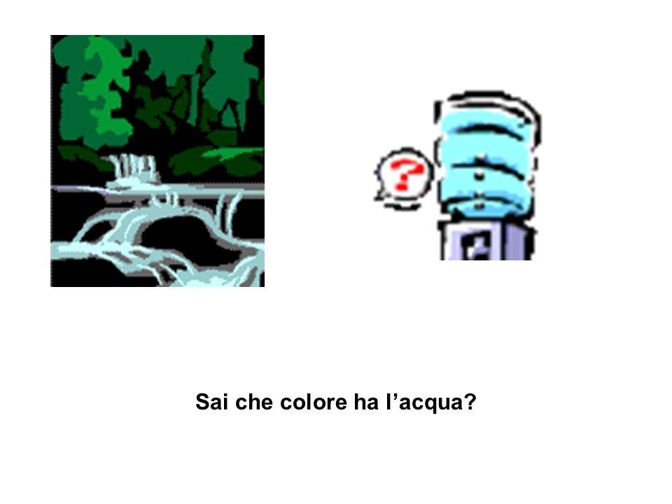 Sai che colore ha l'acqua