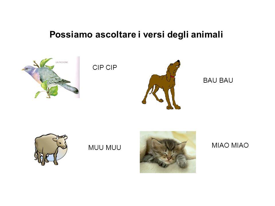 Possiamo ascoltare i versi degli animali