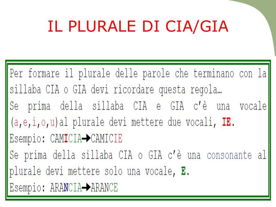 IL PLURALE DI CIA/GIA
