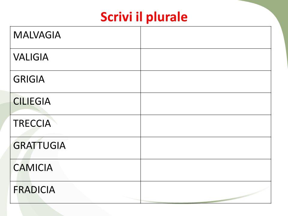 Scrivi il plurale MALVAGIA VALIGIA GRIGIA CILIEGIA TRECCIA GRATTUGIA