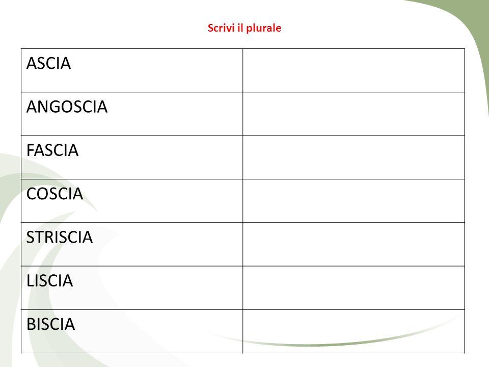 Scrivi il plurale ASCIA ANGOSCIA FASCIA COSCIA STRISCIA LISCIA BISCIA