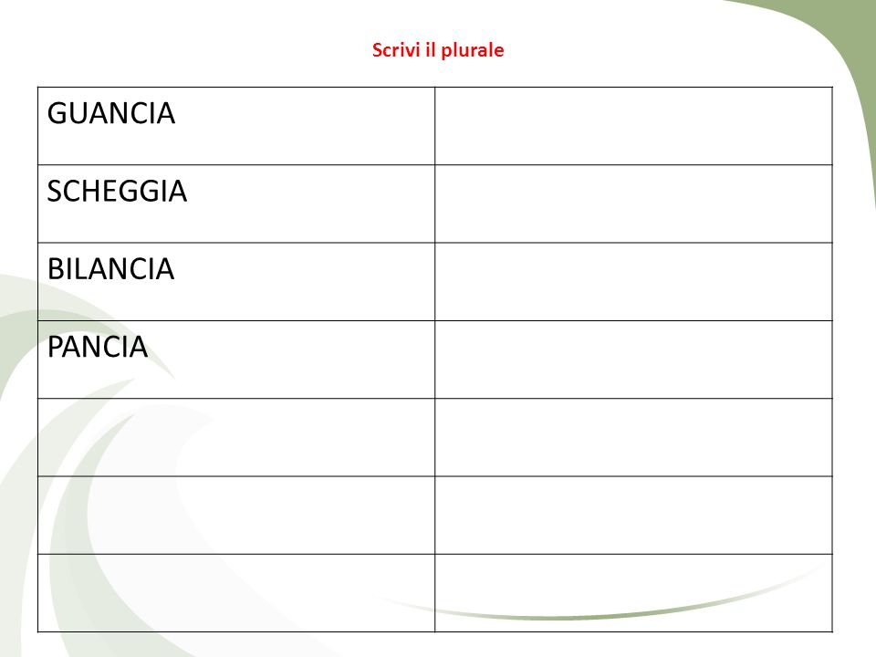 Scrivi il plurale GUANCIA SCHEGGIA BILANCIA PANCIA