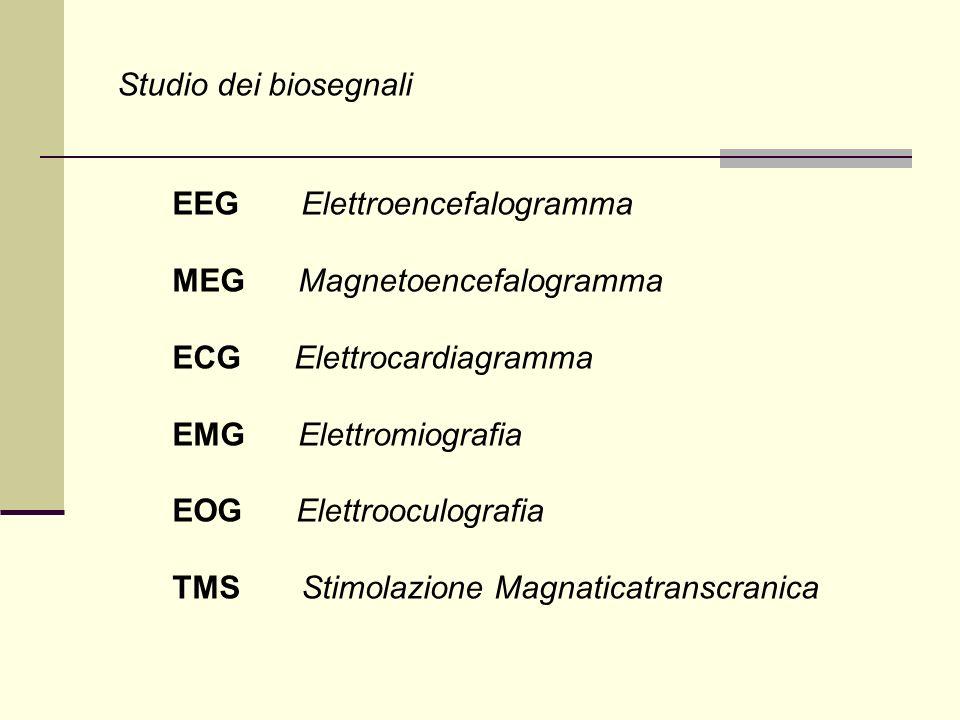 Studio dei biosegnali EEG Elettroencefalogramma. MEG Magnetoencefalogramma. ECG Elettrocardiagramma.