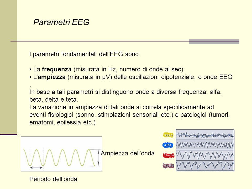 Parametri EEG I parametri fondamentali dell'EEG sono: