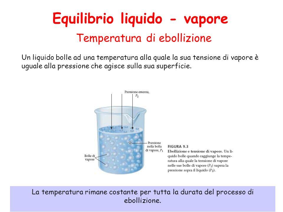 Equilibrio liquido - vapore