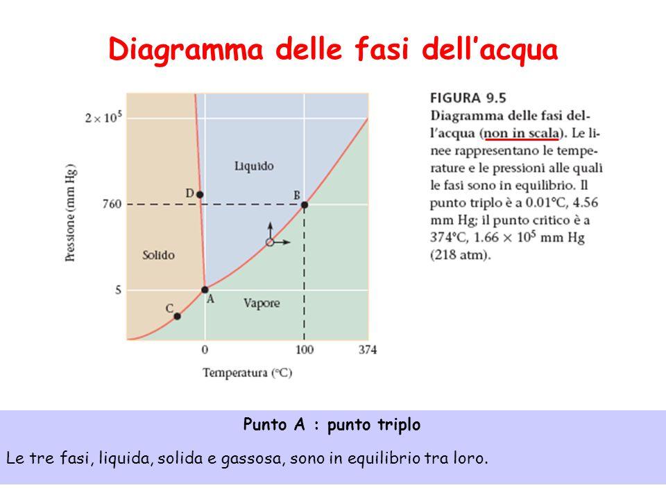 Diagramma delle fasi dell'acqua