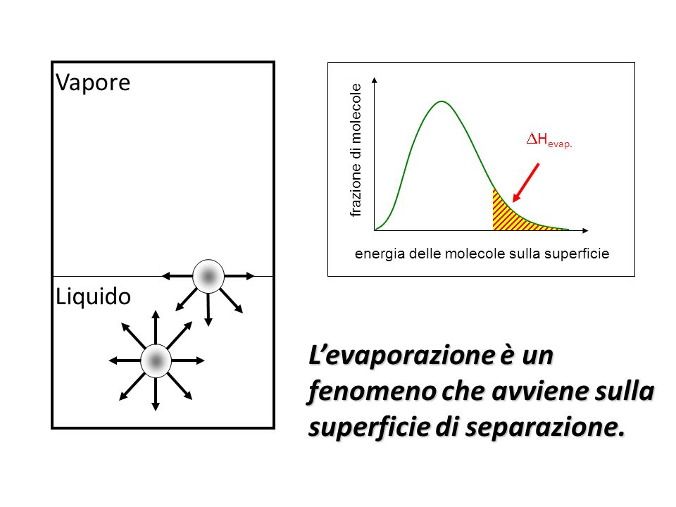 Vapore energia delle molecole sulla superficie. frazione di molecole. Hevap.