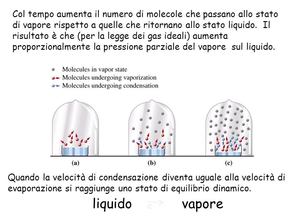 Col tempo aumenta il numero di molecole che passano allo stato di vapore rispetto a quelle che ritornano allo stato liquido. Il risultato è che (per la legge dei gas ideali) aumenta proporzionalmente la pressione parziale del vapore sul liquido.