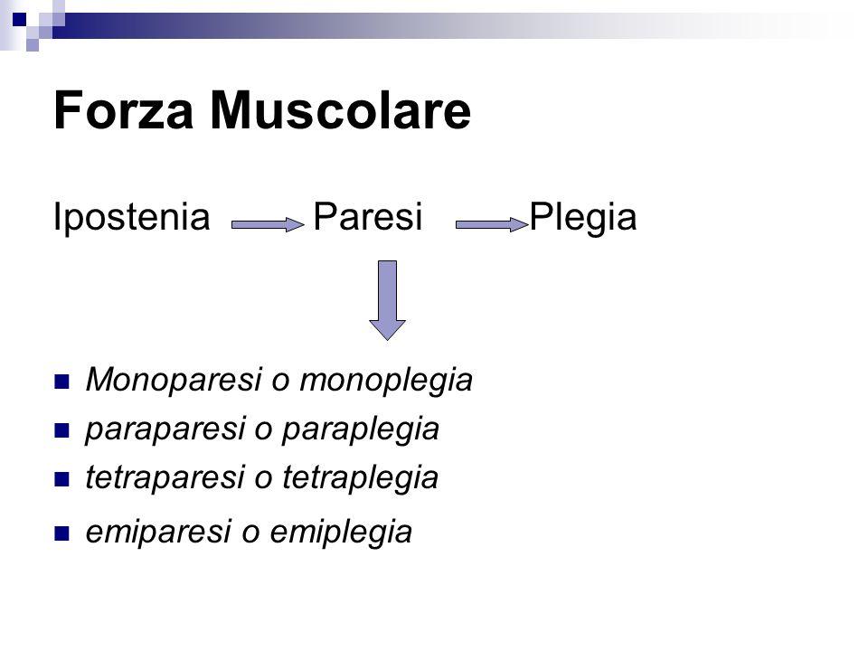 Forza Muscolare Ipostenia Paresi Plegia Monoparesi o monoplegia
