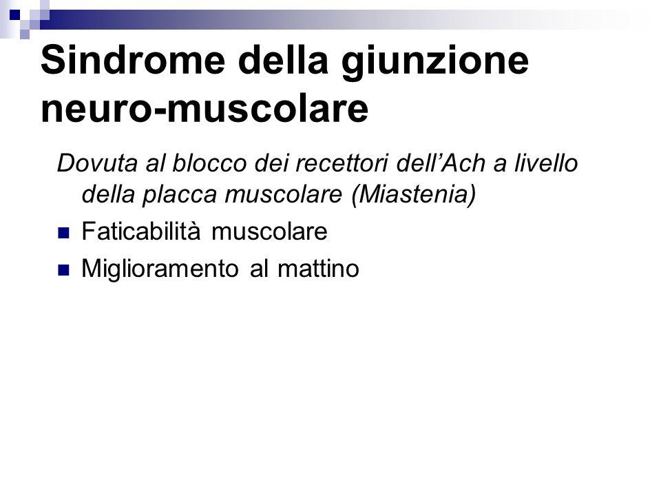 Sindrome della giunzione neuro-muscolare