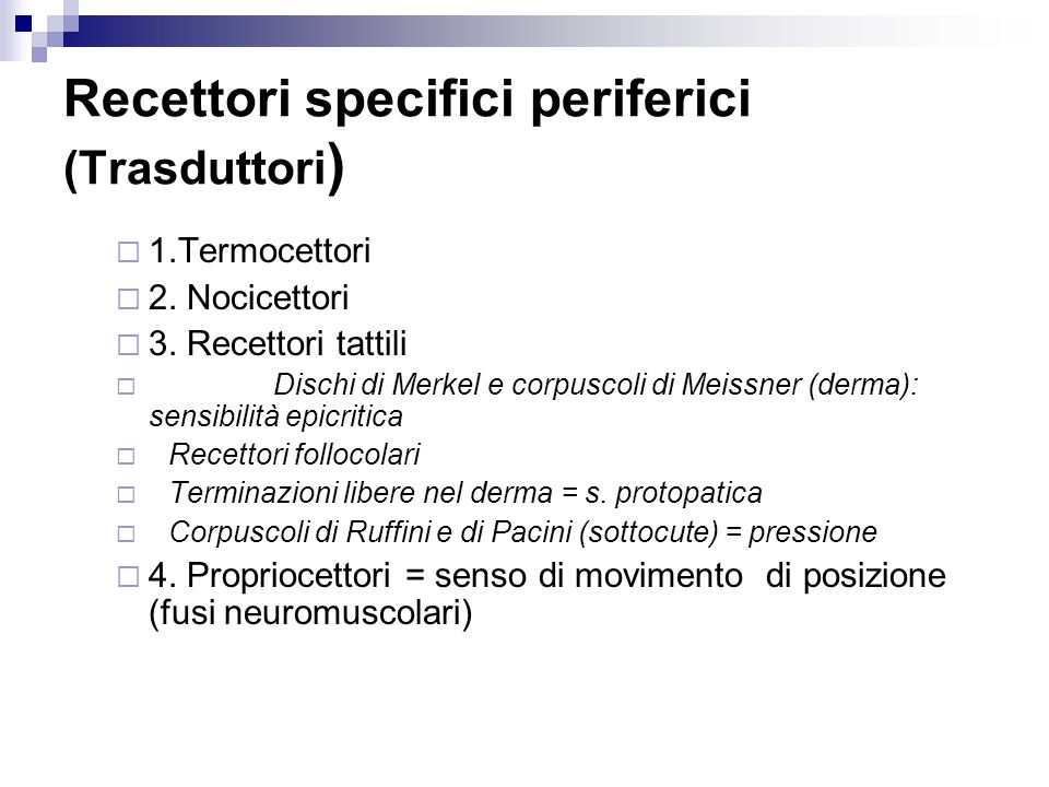Recettori specifici periferici (Trasduttori)