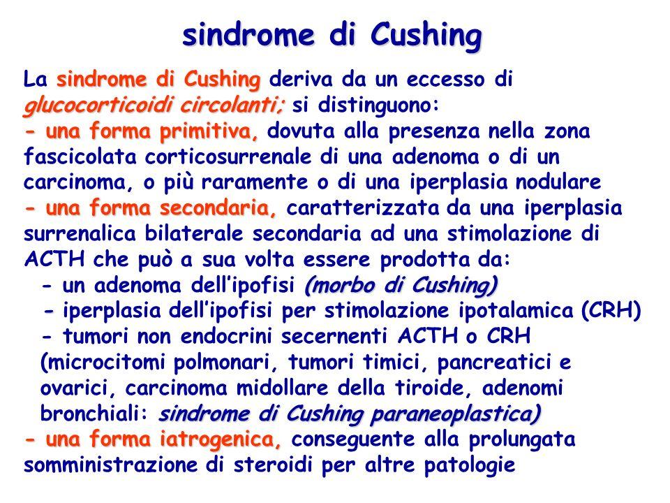 sindrome di Cushing La sindrome di Cushing deriva da un eccesso di glucocorticoidi circolanti; si distinguono: