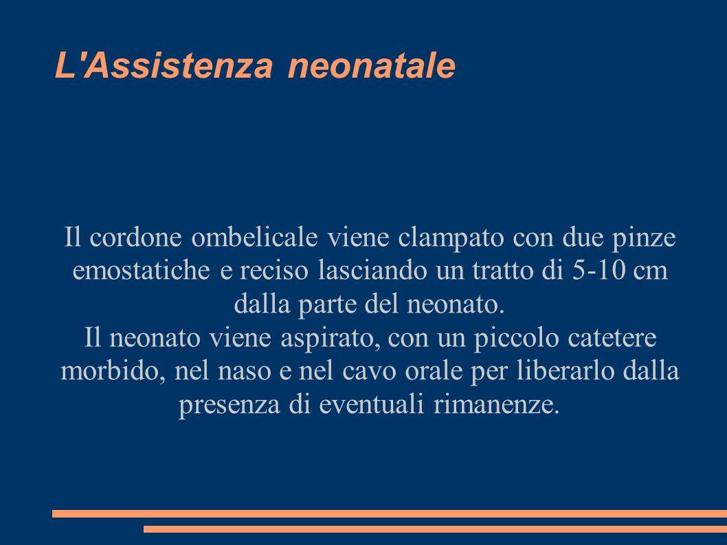 L Assistenza neonatale